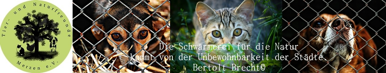 Tier- und Naturfreunde Merzen e.V.